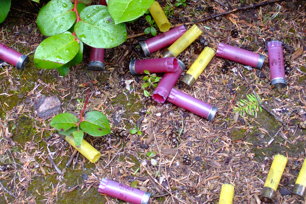 Shotgun shell, Greg Dunlap May 19, 2007