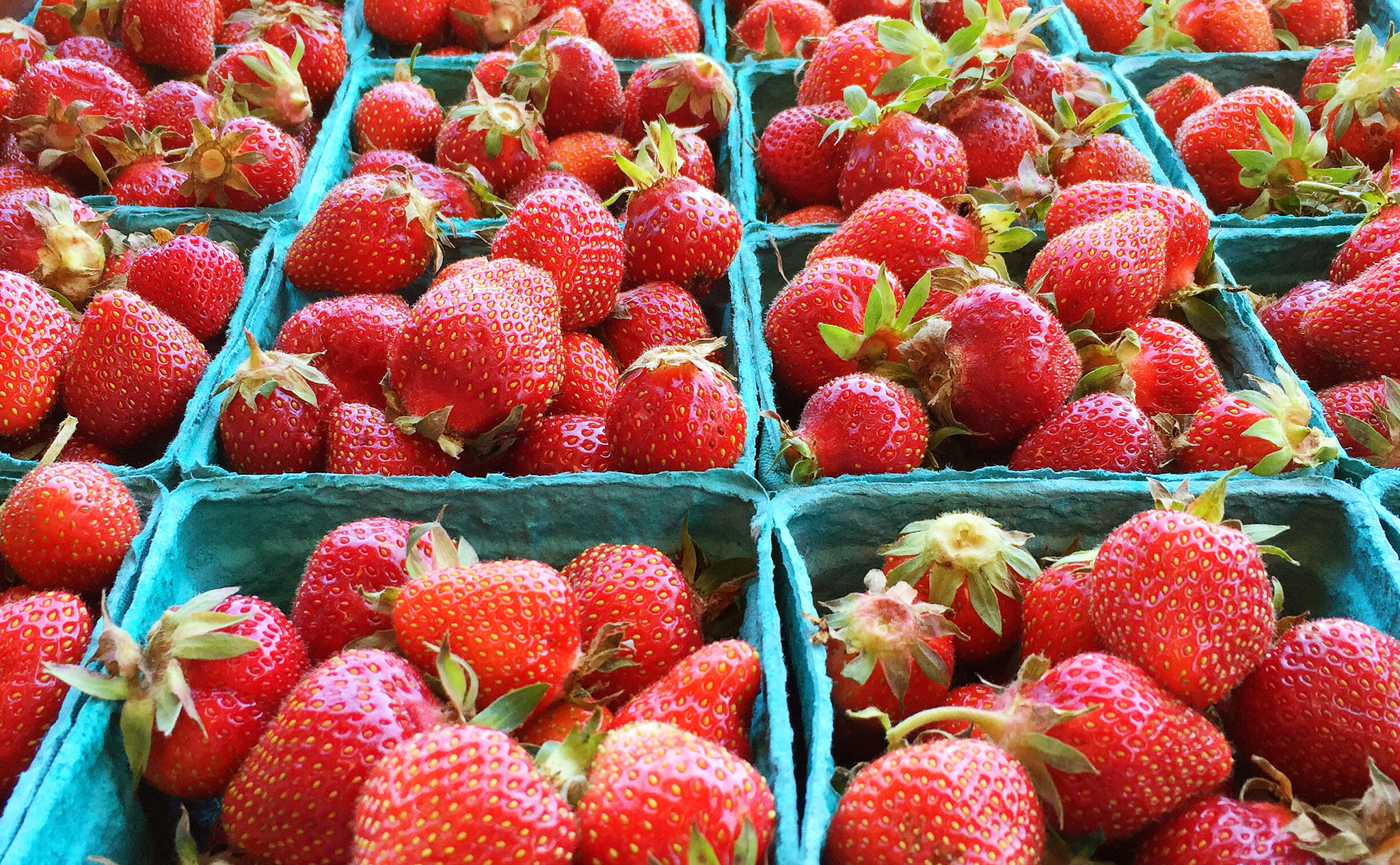 Strawberries, F Delventhal May 23, 2015