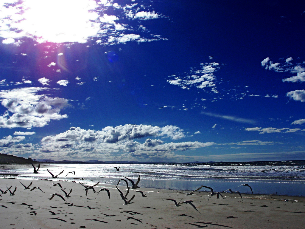 Winter sun, Byron Bay, d i January 1, 2000