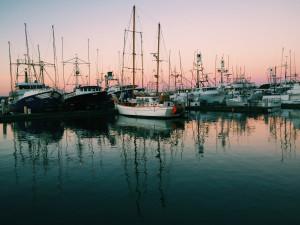 100/47: Marina, San Diego, Loren Kerns November 22, 2014