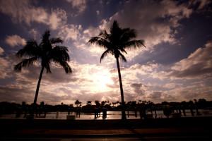 Miami (#77394), Mark Sebastian March 26, 2009