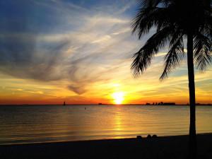 Miami Tease, Ines Hegedus-Garcia March 1, 2013