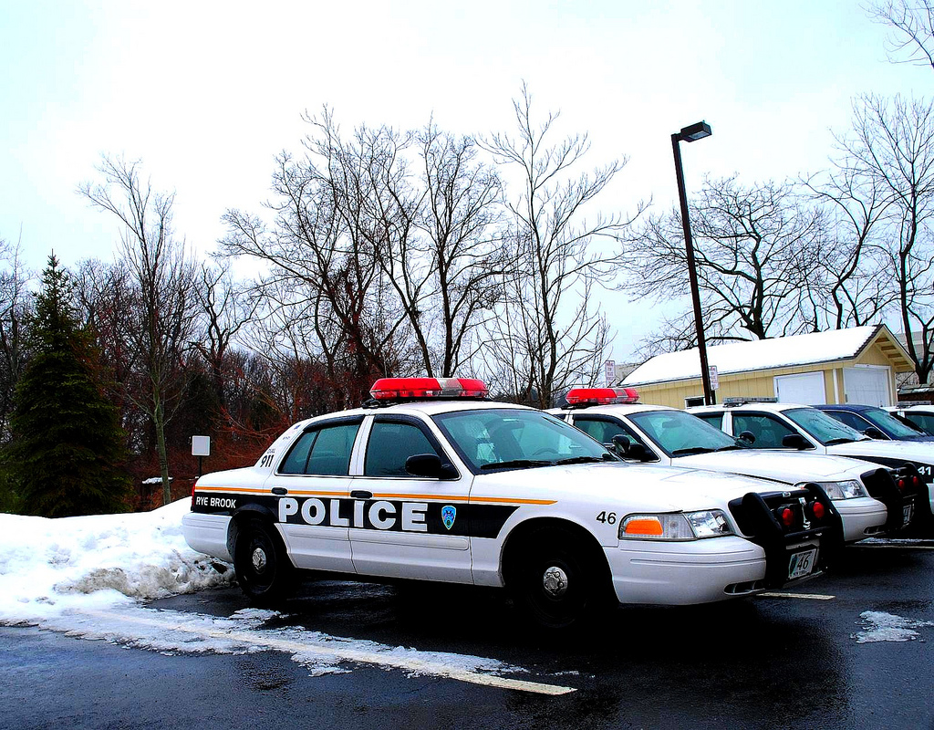 Rye Brook, NY Police Department, Lee Cannon January 17, 2011