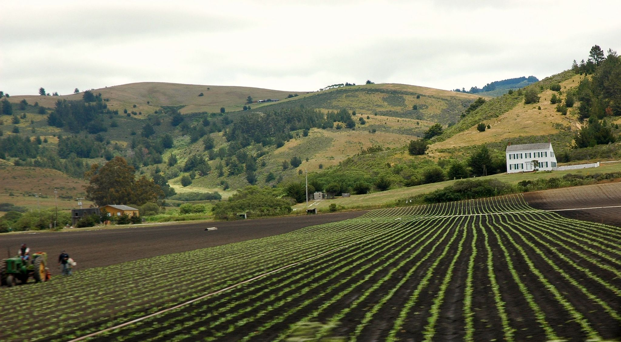 Long fields with farms in California, Credit: Wikimedia Commons