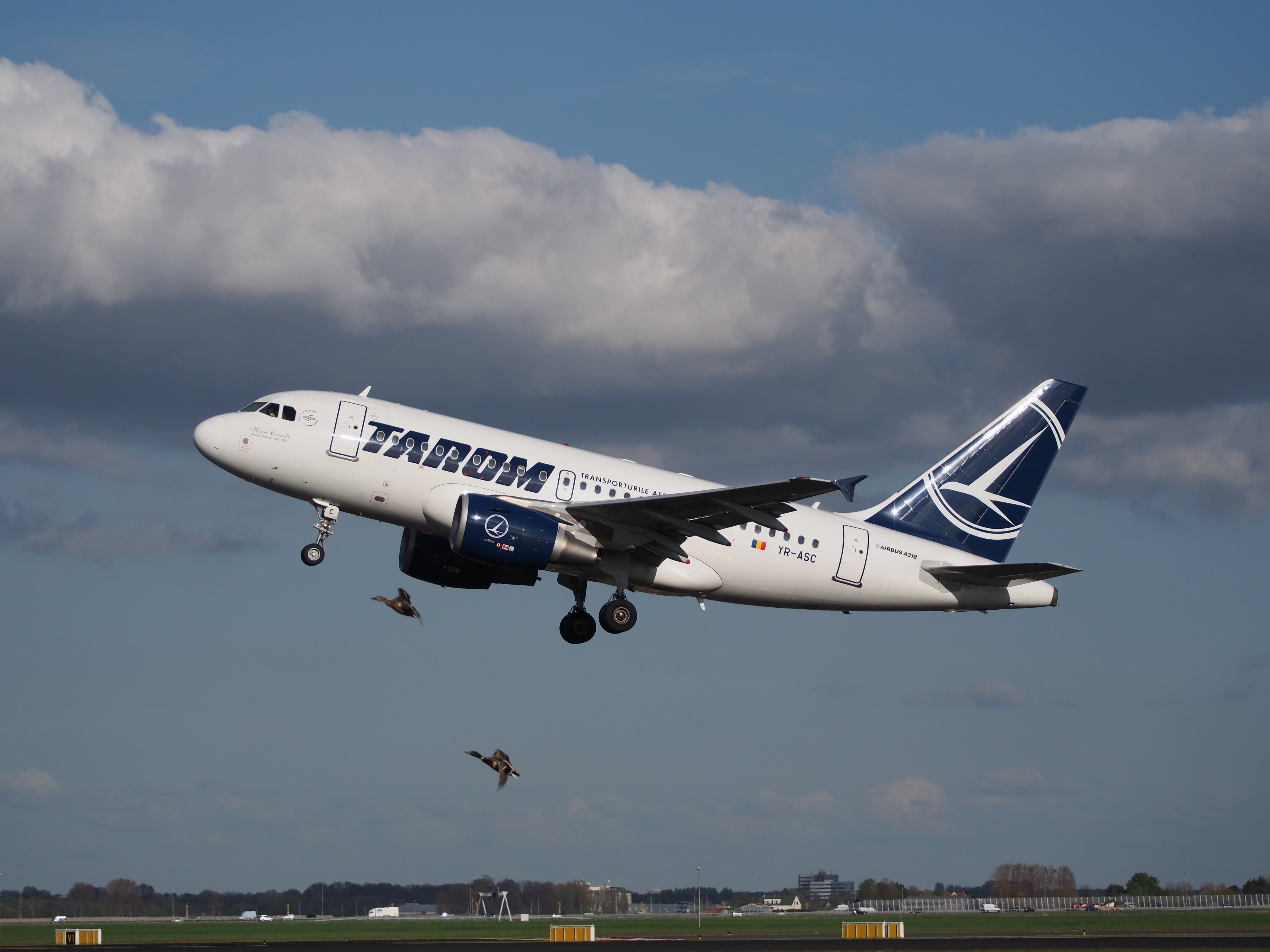 YR-ASC TAROM Airbus A318-111 takeoff from Polderbaan (no bird bird strike), Schiphol (AMS - EHAM) at sunset, pic2.JPG, Credit: Wikimedia Commons